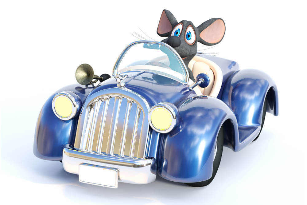 Cartoon Rat Driving Car
